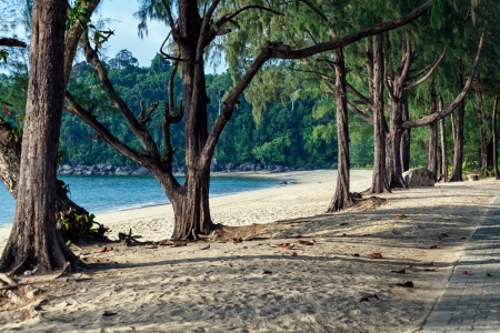 Khao Lak beach in Thailand photo