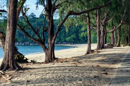 Khao Lak beach in Thailand Stock Photo - 14947064