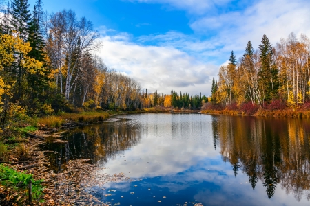Autumn in Siberia photo