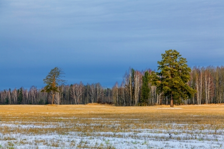 Late autumn. Rural landscape.  photo