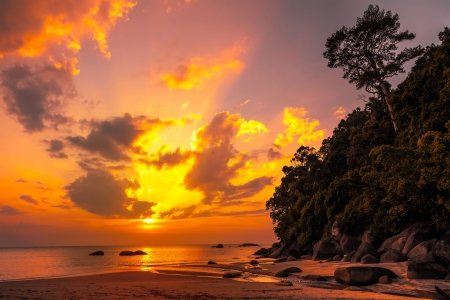 Beautiful tropical sunset photo