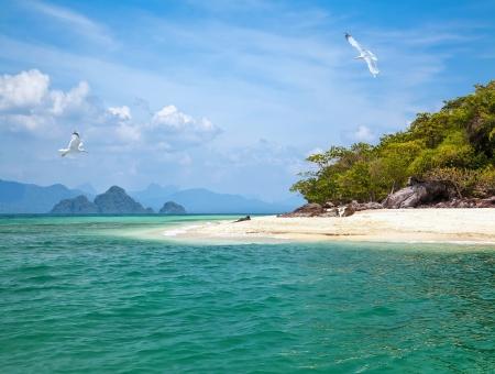 onbewoond: Onbewoond eiland