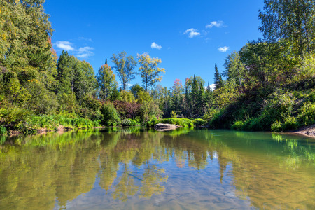 tree  forest: Tongul River in Siberia. Stock Photo