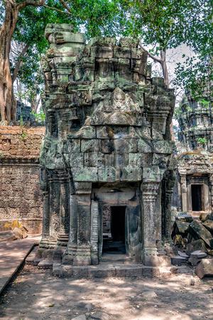 monasteri: Le rovine del Tempio di Ta Prohm in Cambogia Archivio Fotografico