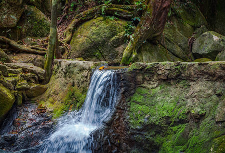 Waterfall in jungle in Thailand.
