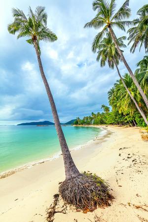 bounty: Tropical Bang Khao Beach on Koh Samui in Thailand.