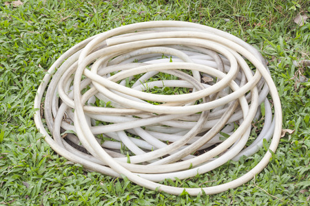 plastic conduit: dirty garden hose on grass