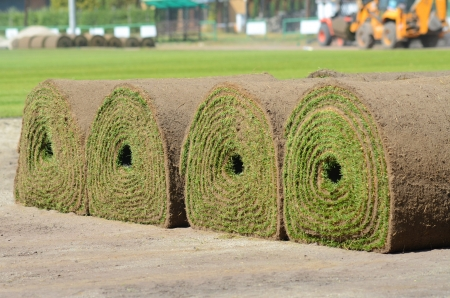 Fresh rolled-up grass turf  photo