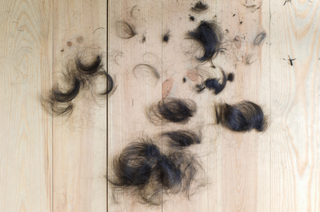 cut off: hair cut off on the wooden floor Stock Photo
