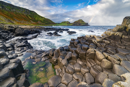 northern ireland: The Giants Causeway  in the morning, Northern Ireland.
