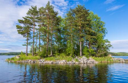 ladoga: The small island with pines on the Lake Ladoga.  Karelia, Russia.