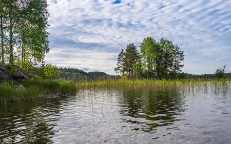 thickets: Pike places on Lake Ladoga. (Grass thickets).  Russia.