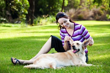 Young woman pulling ears of golden retriever in the park photo
