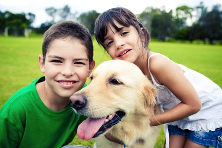 Young boy and girl hugging a golden retriever outdoors Stock Photo - 7050849