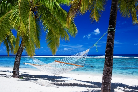 paradise: Empty hammock between palm trees on tropical beach Stock Photo
