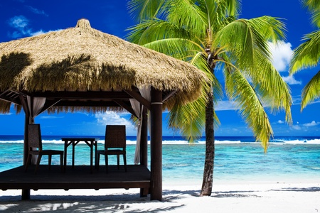 rarotonga: Tropical gazebo with chairs on amazing beach with palm tree