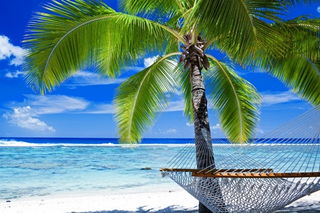 destination scenics: Empty hammock between palm trees on tropical beach Stock Photo
