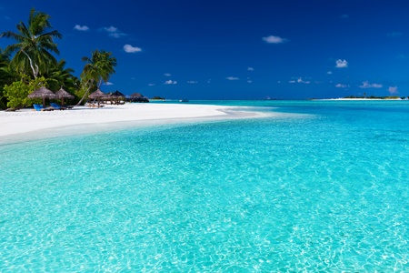 tahiti: Palm trees over stunning lagoon and white sandy beach Editorial
