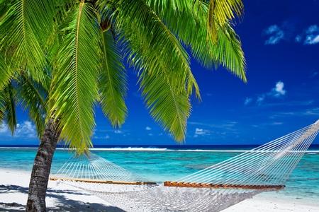 hamaca: Hamaca vacía entre las palmeras en la playa tropical