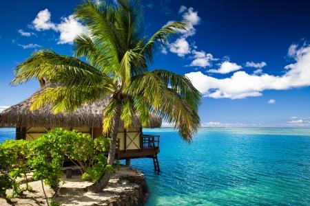 Bungalow tropicales y palmeras junto a la laguna azul increíble Foto de archivo - 12907461