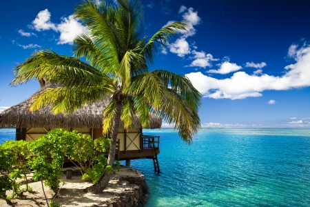 Tropical bungalow and palm tree next to amazing blue lagoon Stock Photo