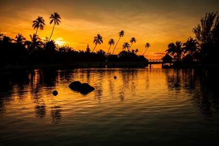 Sunset in a tropical paradise with palm trees and ocean Imagens