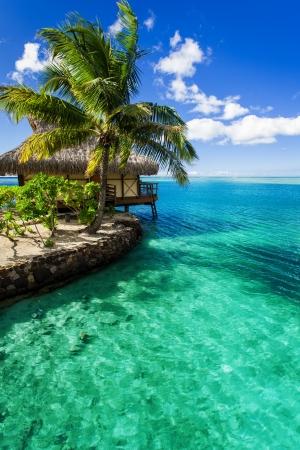 Tropical villa et palmier à côté de la lagune verte étonnante Éditoriale