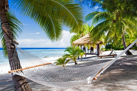 tropical paradise: Empty hammock between palm trees on tropical beach Stock Photo