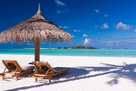 야자 나무의 그림자와 함께 해변에 두 개의 자와 우산