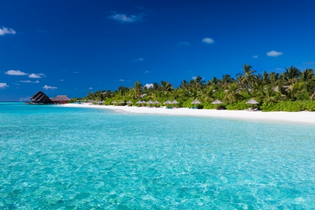 Tropical island with sandy beach with palm trees and pristine water