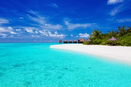 blue lagoon: Isola tropicale con palme e ville sulla laguna turchese
