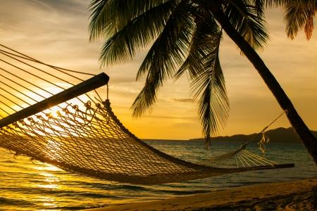 hamaca: Hamaca silueta de palmeras en una hermosa playa al atardecer