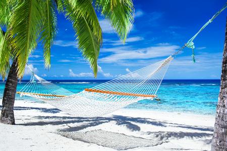 Empty hammock between palm trees on tropical beach photo