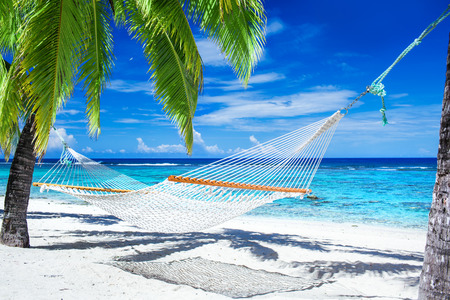 Empty hammock between palm trees on tropical beach Stockfoto