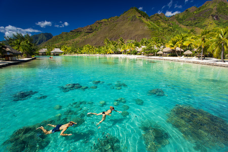 Young couple snorkeling in resort with small fish