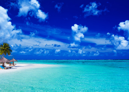 Palm trees over stunning lagoon and white sandy beach photo