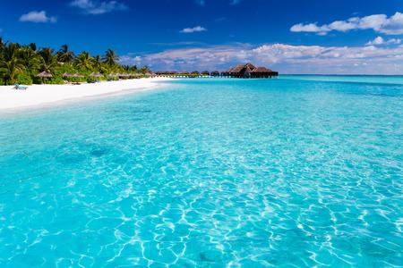 ヤシの木と自然のままの水で砂浜と熱帯の島