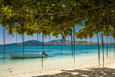 fiji: Boat and trees on a tropical beach in Fiji Islands Stock Photo