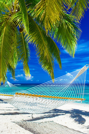 Witte hangmat op het strand tussen de palmbomen met uitzicht op de oceaan Stockfoto