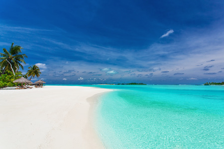 Palm trees over stunning lagoon and whide white sandy beach