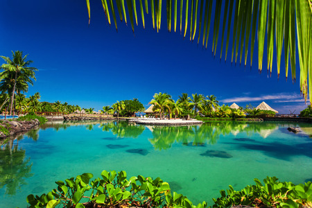 Tropical resort with a green lagoon and palm trees around the frame