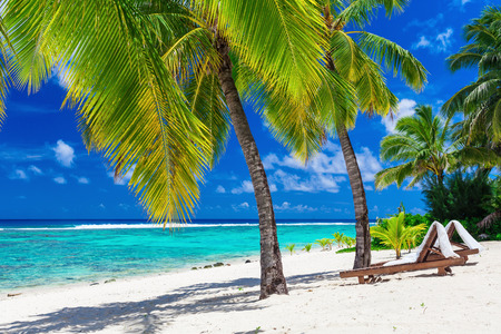 island: Beach beds under coconut palm trees with an ocean view Rarotonga Cook Islands