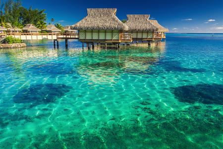 romantico: Villas en la laguna con pasos en el agua potable superficial con coral Editorial