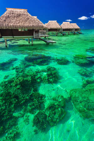 reef: Water villas on the green tropical reef, the best island holidays
