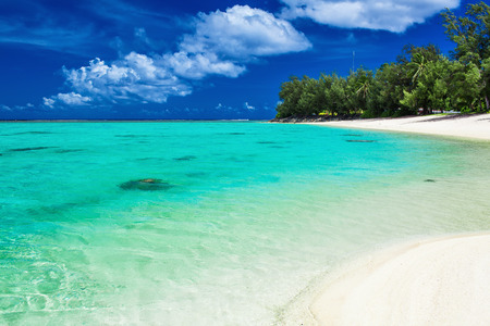 The best swimming beach with palm trees on tropical island Rarotonga, Cook Islands