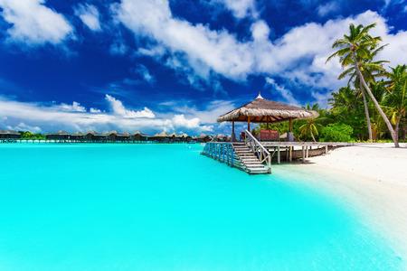 Jetty i palmy z kroków do amazing tropikalnym błękitną laguną