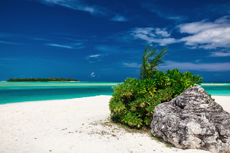 caribbean beach: Dreamy crystal clear sea with a rock on the white sandy beach