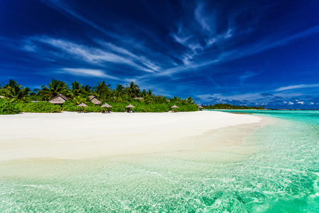 lagoon: Palm trees over stunning lagoon and white sandy beach in Maldives