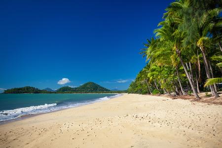 playas tropicales: Palmeras en la playa de Palm Cove en Australia Foto de archivo