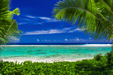 bora bora: Pristine beach on tropical island during sunny day framed by palm trees Stock Photo